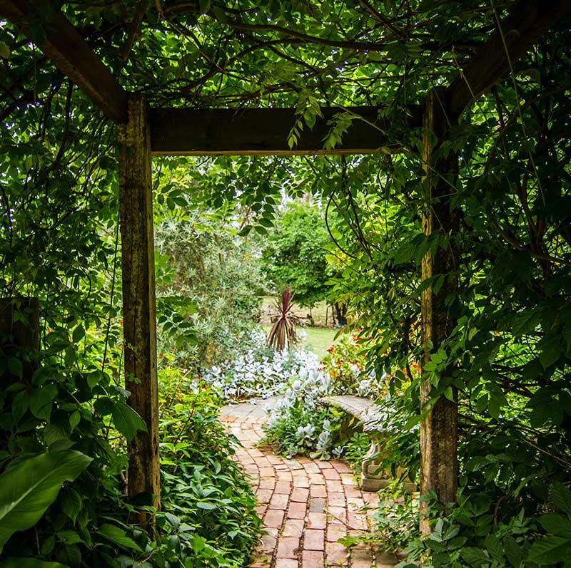 Les jardins thérapeutiques